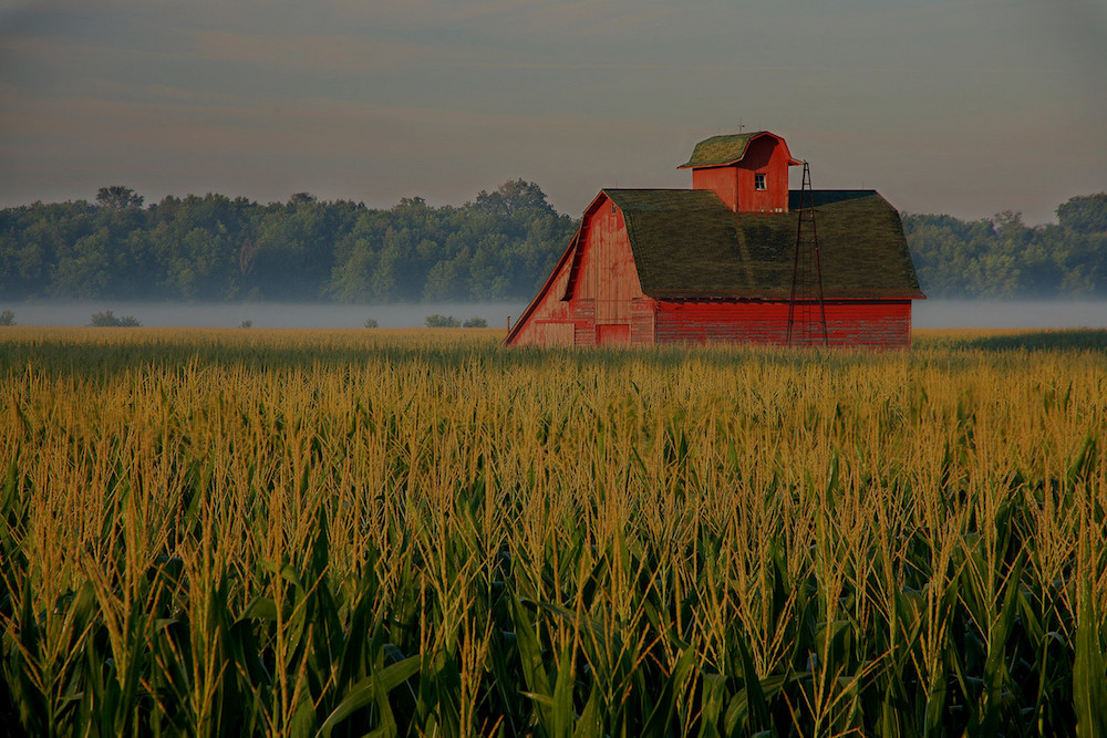 farm and crop insurance in Centralia STATE | Insurance Store